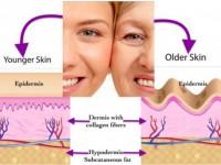 Qual a importância do colágeno na harmonização facial?